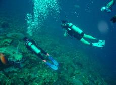 scuba diving - shore diving  - Caribbean