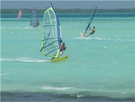 Windsurfen in der Karibik