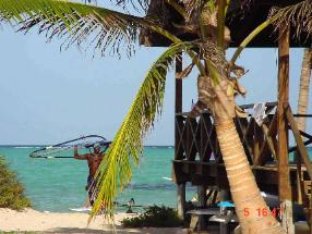 Bonaire Caribbean - Windsurfing at Lac Bay - accommodation at Coco Palm Garden